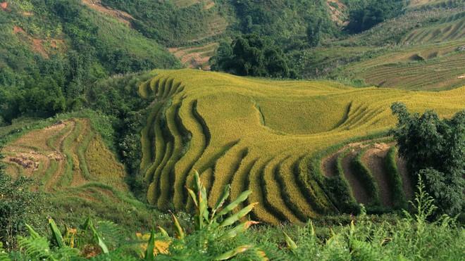 CNN: Đây là 30 điểm đến đẹp nhất Việt Nam - Ảnh 3.