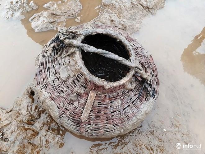 Loại cá kỳ dị nhất hành tinh được nhiều ngư dân săn bắt ở biển Thanh Hóa - Ảnh 5.