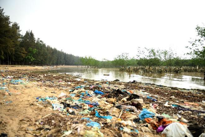 Về Đa Lộc xem núi rác treo lơ lửng trên rừng phòng hộ  - Ảnh 5.