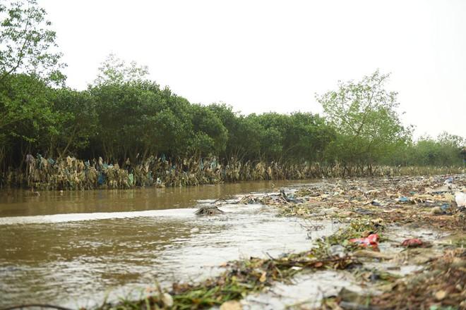 Về Đa Lộc xem núi rác treo lơ lửng trên rừng phòng hộ  - Ảnh 14.