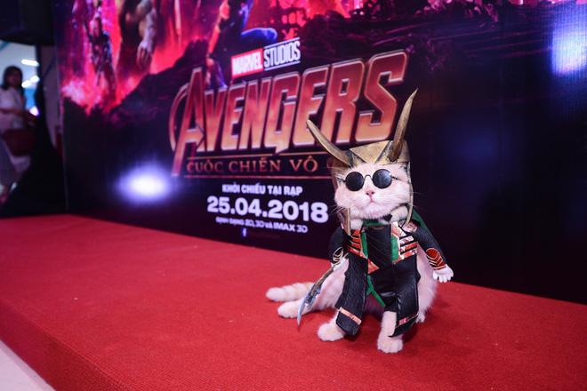 Khách mời đặc biệt gây sốt hơn cả sao Việt tại họp báo phim bom tấn Avengers - Ảnh 7.