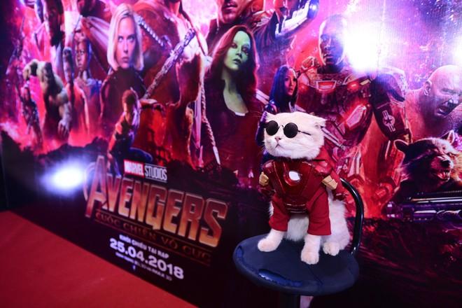 Khách mời đặc biệt gây sốt hơn cả sao Việt tại họp báo phim bom tấn Avengers - Ảnh 8.