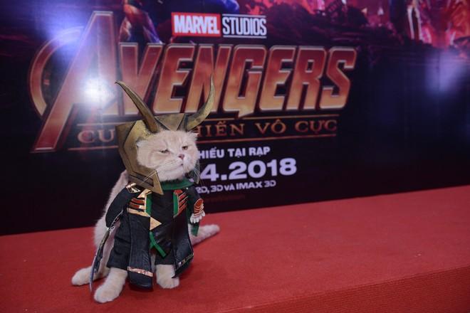 Khách mời đặc biệt gây sốt hơn cả sao Việt tại họp báo phim bom tấn Avengers - Ảnh 11.
