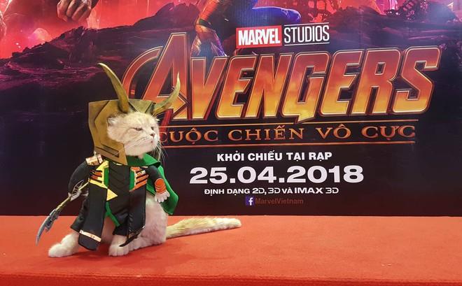 Khách mời đặc biệt gây sốt hơn cả sao Việt tại họp báo phim bom tấn Avengers