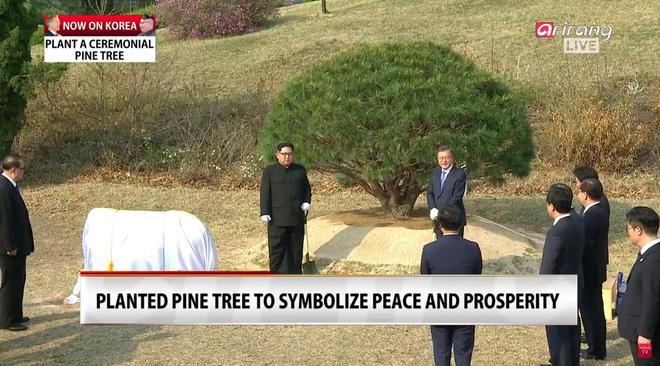 [CẬP NHẬT] Lãnh đạo Triều Tiên, Hàn Quốc dạo bộ, không có người tháp tùng - Ảnh 1.