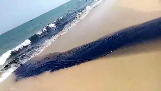 Dòng nước đen ngòm, hôi thối xả thẳng ra biển Mũi Né - Ảnh 2.