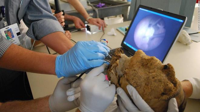 FBI bất ngờ tìm ra lời giải về bí ẩn xác ướp bị chặt đầu 4.000 năm tuổi - Ảnh 6.