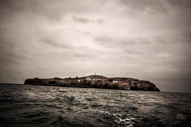 Hành trình khắc nghiệt tại hòn đảo làm giàu bằng phân chim, tạo cơn sốt khắp châu Âu - Ảnh 6.