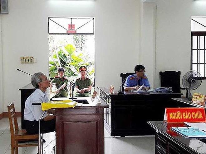 Thẩm phán xử Nguyễn Khắc Thủy dâm ô trẻ em nói gì? - Ảnh 1.