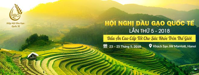 20 chuyên gia từ 5 châu lục bàn phương án tăng giá trị cho gạo Việt - Ảnh 3.