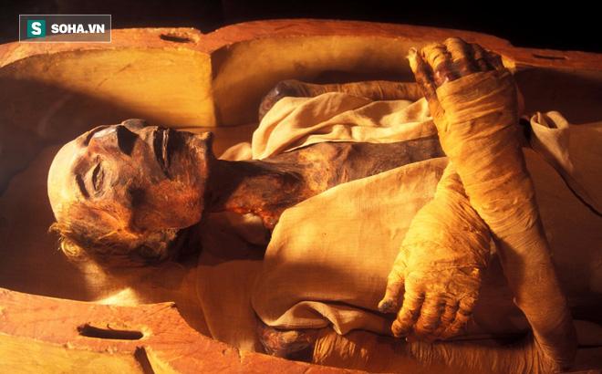 Nhà khảo cổ và phát hiện chấn động thế kỷ XX, mất 10 năm mới thống kê xong
