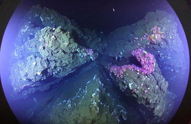 Nước dập được lửa vậy mà tại sao vẫn có núi lửa phun trào dưới lòng đại dương? - Ảnh 4.