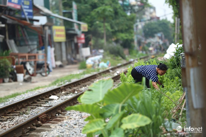 Mưu sinh trên đường ray tàu hỏa, nhìn đã thấy rùng mình - Ảnh 2.