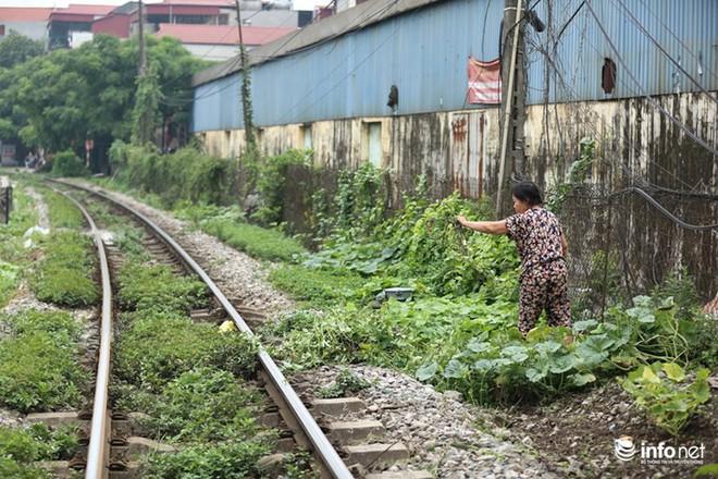 Mưu sinh trên đường ray tàu hỏa, nhìn đã thấy rùng mình - Ảnh 4.