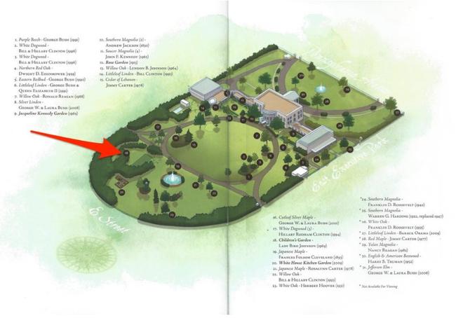 Những hình ảnh bên trong khu vườn bí mật của Nhà Trắng - ảnh 6