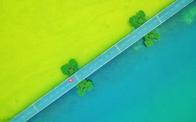 24h qua ảnh: Cảnh nông dân Phú Quốc phơi hồ tiêu lên báo Anh - Ảnh 3.