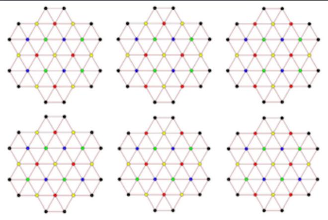 Nhà sinh học tìm ra lời giải cho bài toán hóc búa suốt 68 năm - Ảnh 1.