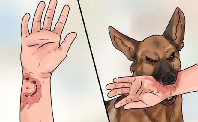 Bệnh dại là bệnh viêm não tủy cấp ở động vật có vú nhất là loài ăn thịt như chó, mèo, cáo, dơi... do virut dại gây ra, qua nước bọt (vết cắn) truyền cho người