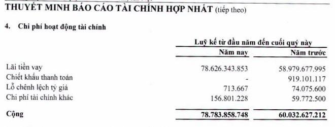 Mỗi ngày, công ty của đại gia Trịnh Văn Quyết phải trả bao nhiêu tiền lãi vay? - Ảnh 1.