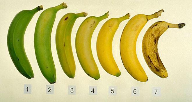 Chuối xanh tốt cho sức khỏe, không thua chuối chín: Nhiều người bất ngờ khi biết sự thật - Ảnh 3.