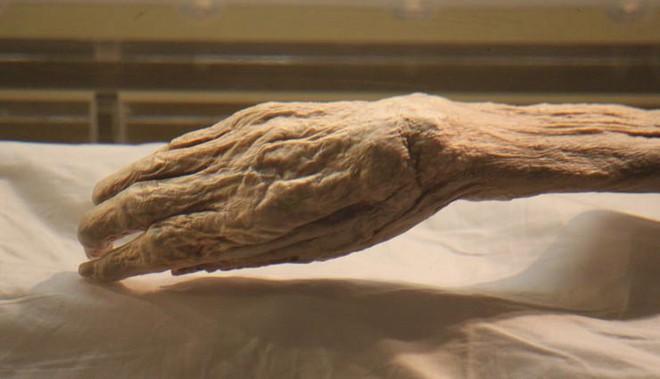 Giải mã thuật ướp xác bậc thầy thời cổ đại: Nội tạng còn nguyên vẹn, da vẫn đàn hồi tốt! - ảnh 6