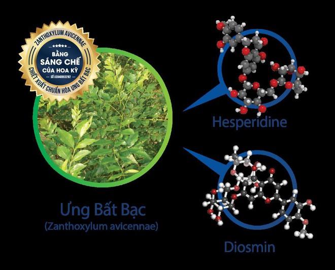 Dược liệu quý ngàn năm giúp bảo vệ tế bào gan - Ảnh 2.