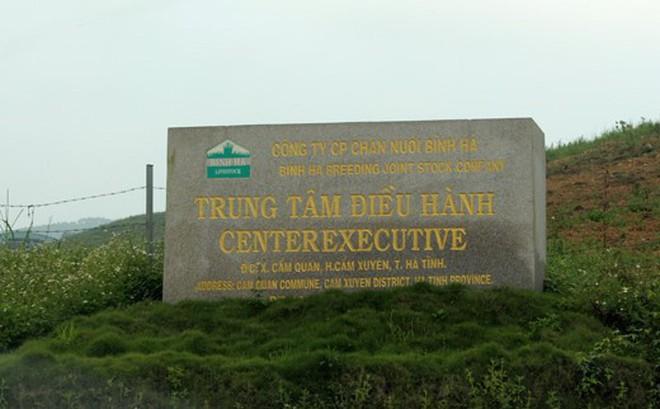"""Vì sao dự án nuôi bò Bình Hà gần 5.000 tỷ đang """"chết lâm sàng""""?"""