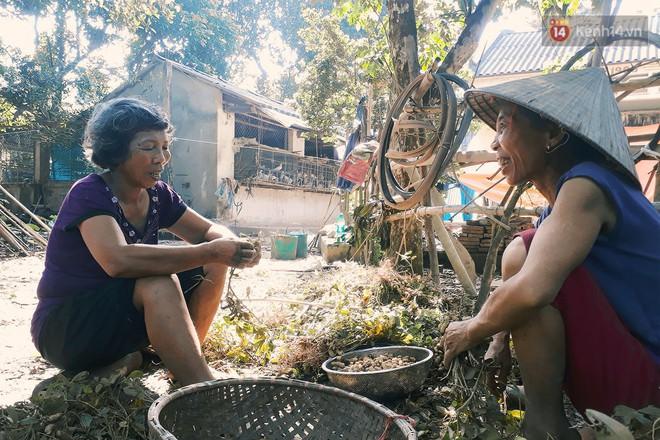Cô giáo về hưu 15 năm sống trên ốc đảo ở Vĩnh Phúc: Không cần ra chợ, không biết bệnh tật và không cần đến tiền! - Ảnh 2.
