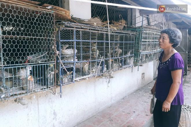 Cô giáo về hưu 15 năm sống trên ốc đảo ở Vĩnh Phúc: Không cần ra chợ, không biết bệnh tật và không cần đến tiền! - Ảnh 5.