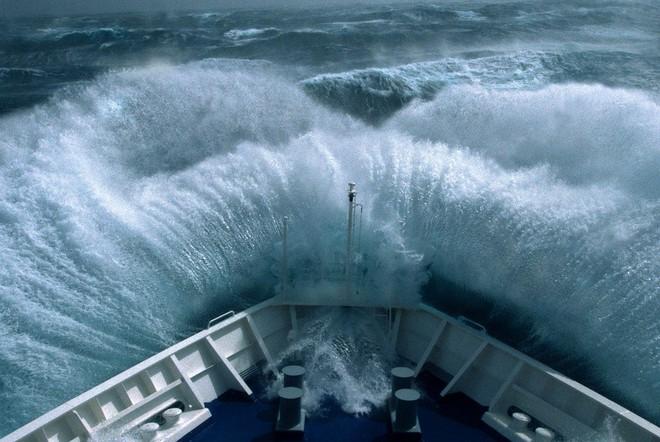 Gần 500 năm qua, đây là quái vật đại dương chết chóc, đáng sợ bậc nhất trên Trái Đất! - Ảnh 5.