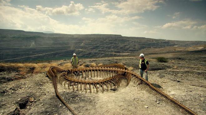 Quái vật nặng 1 tấn Titanoboa: Duy nhất 1 nơi trên Trái Đất có hóa thạch của nó - ở đâu? - Ảnh 2.
