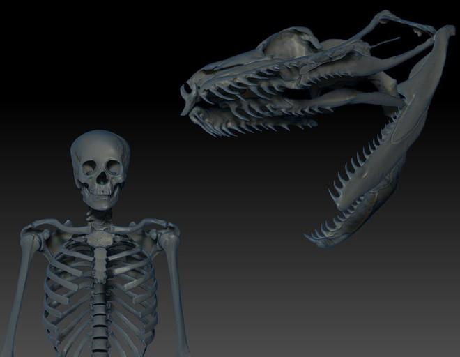 Quái vật nặng 1 tấn Titanoboa: Duy nhất 1 nơi trên Trái Đất có hóa thạch của nó - ở đâu? - Ảnh 1.