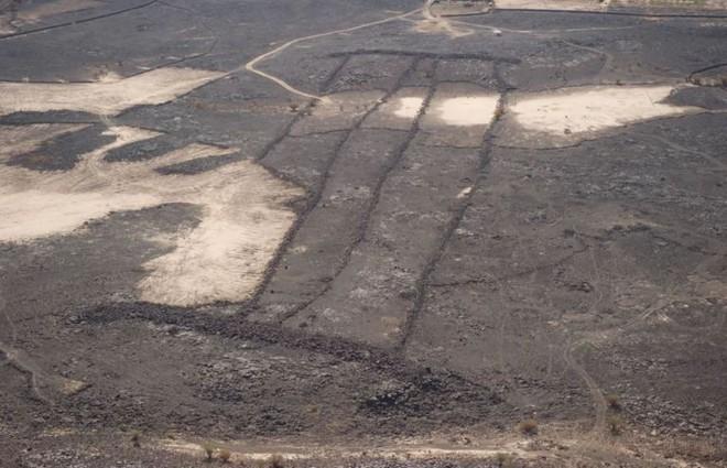 Những phát hiện khảo cổ bí ẩn nhất: Cánh tay rụng rời ra, không tìm thấy phần còn lại - Ảnh 5.