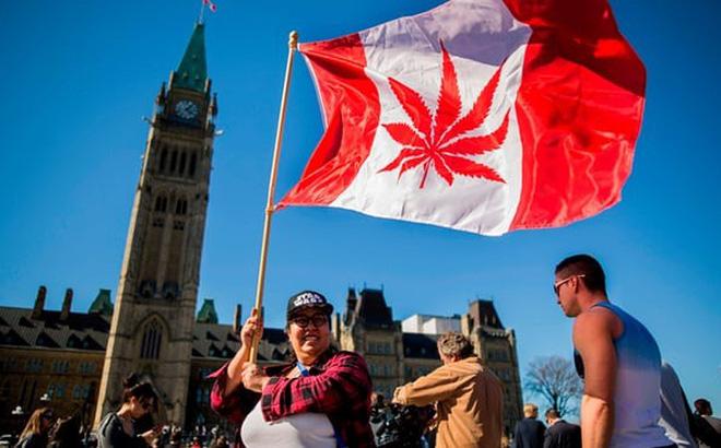 Canada gia tăng căng thẳng với Mỹ sau khi hợp pháp hoá cần sa