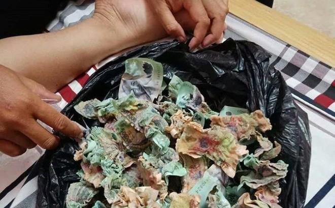 Túi tiền 100 triệu và tai nạn khiến bao người xót xa
