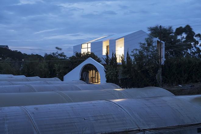 Ngôi nhà trên sườn đồi Đà Lạt của nhiếp ảnh gia Việt đẹp không tì vết trên báo Mỹ - Ảnh 2.