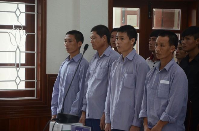 Phó đồn Biên phòng cửa khẩu hầu tòa vụ phá rừng Pơ mu chấn động Quảng Nam 2