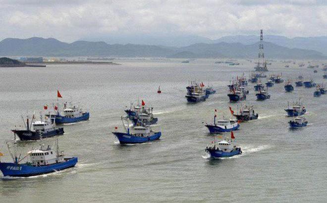 Trung Quốc và nỗi lo tận diệt hải sản