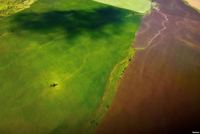 24h qua ảnh: Cá chết trắng phủ kín mặt hồ ở Hà Nội - Ảnh 10.