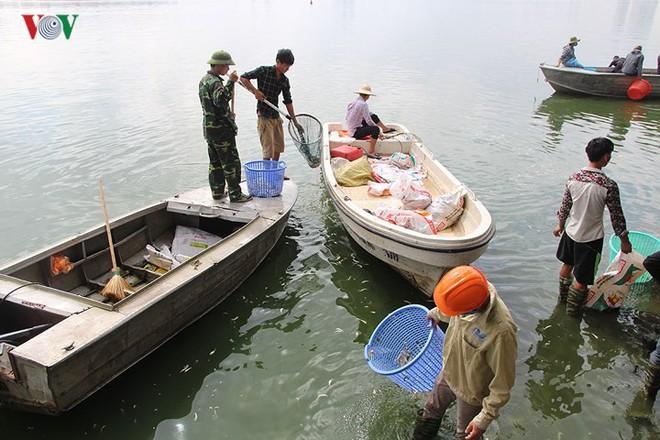 10 tấn cá chết, mùi hôi thối bủa vây người dân Hồ Tây - Ảnh 5.