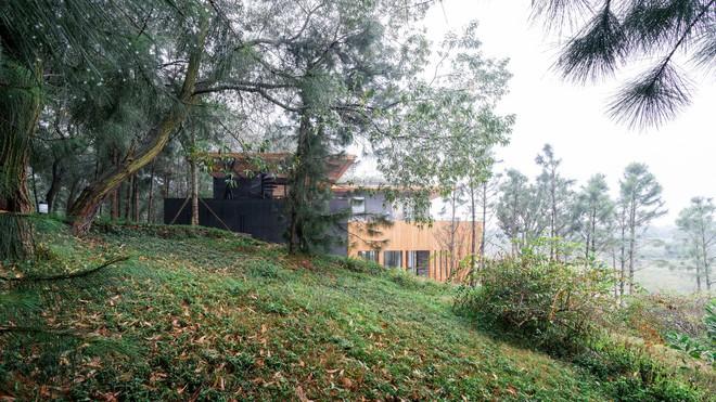 Độc đáo với biệt thự giữa đồi thông có bể bơi ngoài trời ở Vĩnh Phúc - Ảnh 2.