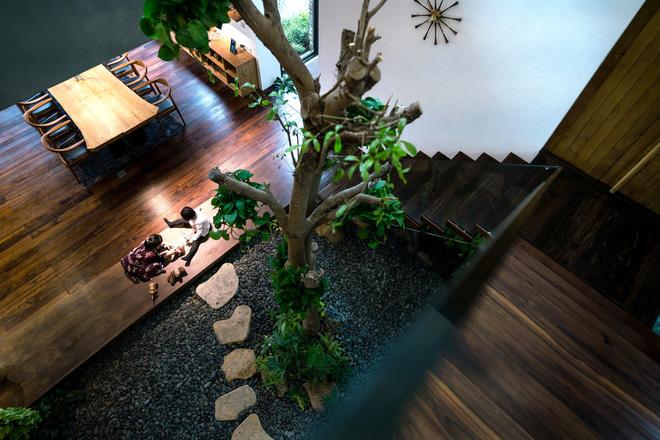 Độc đáo với biệt thự giữa đồi thông có bể bơi ngoài trời ở Vĩnh Phúc - Ảnh 12.
