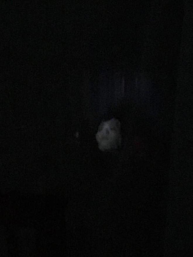 Vừa bước vào nhà, chồng chết lặng khi nhìn thấy bóng hình trên giường - ảnh 1