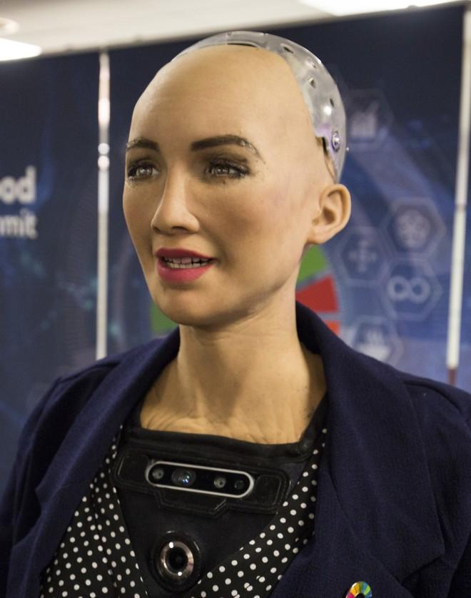 Hồ sơ khủng của robot Sophia từ khi làm người đến khi sang Việt Nam - Ảnh 7.