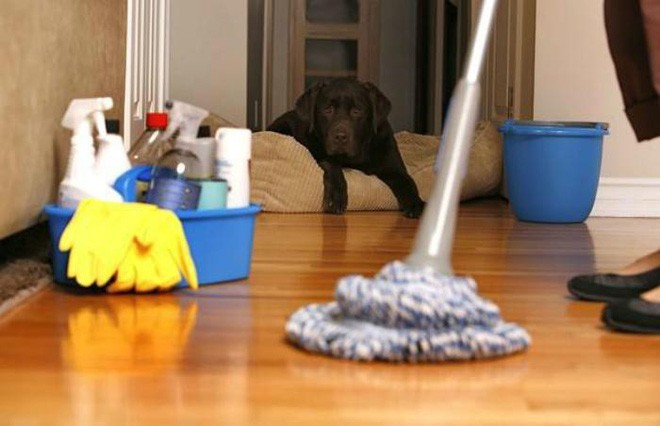 Một phụ nữ tử vong do ngộ độc chất tẩy rửa vệ sinh khi lau bếp: Chuyên gia đưa ra những cảnh báo đáng chú ý - Ảnh 1.