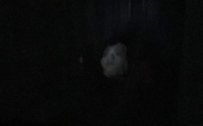 """Vừa bước vào nhà, chồng """"chết lặng"""" khi nhìn thấy bóng hình trên giường"""