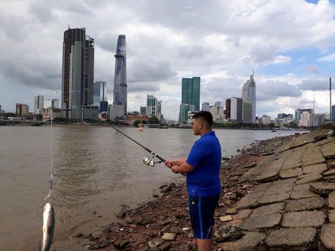 Đi câu cá, chàng trai bất ngờ kéo được cả Hoa hậu Đại dương từ dưới sông lên - ảnh 8