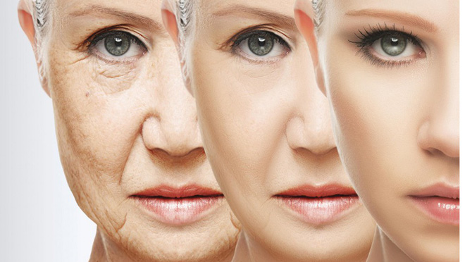 Thử nghiệm thuốc trường sinh đã có hiệu quả, tương lai ai cũng sống lâu trăm tuổi sắp đến rồi - Ảnh 3.