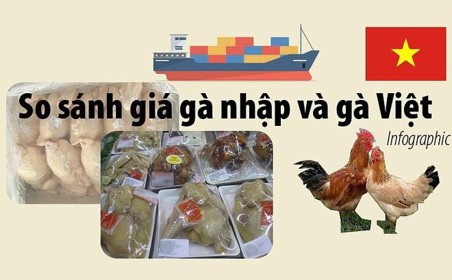 Giá gà không đầu, không chân nhập khẩu khác gà Việt ra sao?