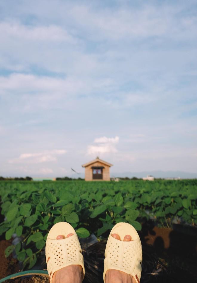 """""""Thánh"""" dép tổ ong tái xuất với bộ ảnh mới, lần này là rong ruổi miền Bắc nước Nhật xinh đẹp"""